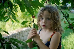 Jeune fille mangeant une cerise