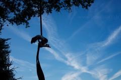 Tissus aérien dans un arbre